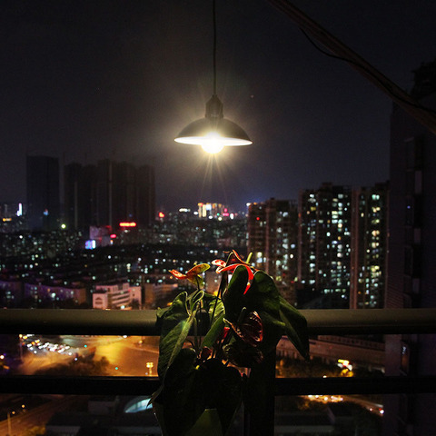 cabo pendurado luz para jardim ao ar livre lampada quintal