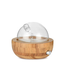 Bamboo Glass Essential Oil Nebulizer Aromatherapy Diffuser Humidifier Low Noise Mist Control Timer Humidifiers EU Plug