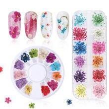 Сушеные цветы украшения для ногтей натуральные Цветочные наклейки