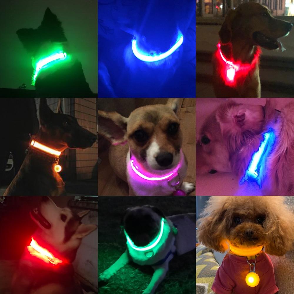 Ricarica USB Led collare per cani anti-perso/evitare collare per incidenti auto per cani cuccioli collari per cani cavi forniture LED prodotti per animali domestici 2