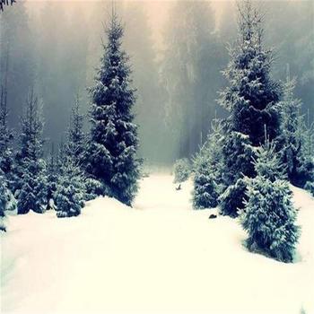 Magiczny śnieg DIY natychmiastowy sztuczny śnieg w proszku symulacja śnieg magia wykonaj Prop wesele świąteczna dekoracja wnętrz tanie i dobre opinie CN (pochodzenie) Proszku śniegu