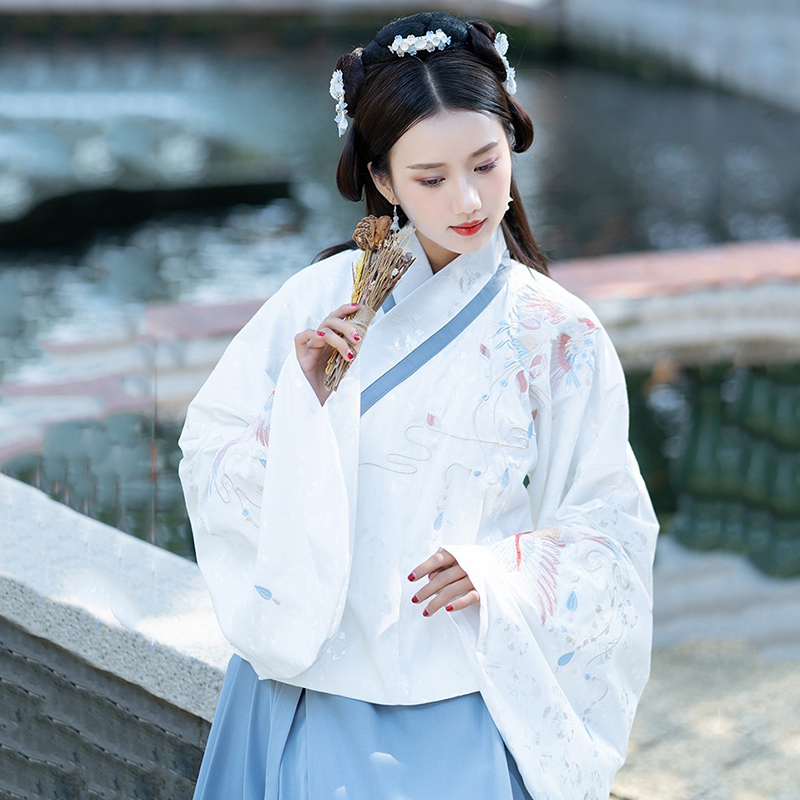 Luxury Embroidery Women Hanfu Classical Dance Costume Folk Fairy Dress Festival Outfit Ming Dynasty Performance Clothes DF1485