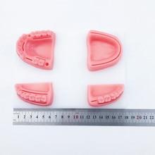 4 قطعة/المجموعة الأسنان الفم/الصمغ خياطة التدريب وحدة سيليكون اللثة خياطة نموذج