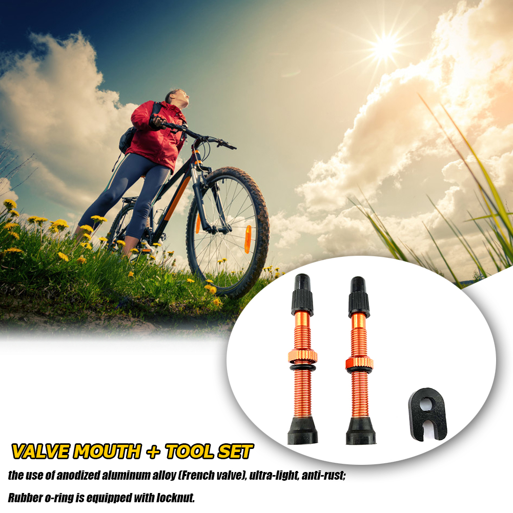 1 Pair 60mm Alloy Stem Presta Valve with Tool for Road MTB Bike Tubeless Tires