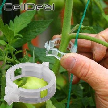 50 100pcs plastikowa roślina klipy obsługuje łączy wielokrotnego użytku ochrona szczepienia narzędzie do mocowania artykuły ogrodowe do warzyw pomidor tanie i dobre opinie CN (pochodzenie) Z tworzywa sztucznego Tomato clips Plant support Plant support clips Vines clips Vines clamps 30 X 30 X 10mm