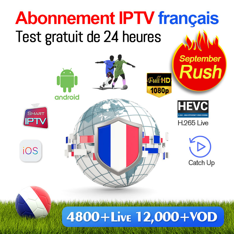 1 Year SUBTV IPTV Subscription Code IPTV France Full HD French Belgium Netherlands Portugal for Android IPTV M3u Mag25X Greece in Set top Boxes from Consumer Electronics