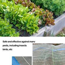 1,5*6 м садовая сетка чистая сеть от птиц овощей защитная сетка для фруктов птица от комаров насекомых Репеллент контроль за паразитами посадочная сетка