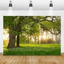 Laeacco sol floresta grassland flores crianças retrato pano de fundo fotográfico para photo studio photocall