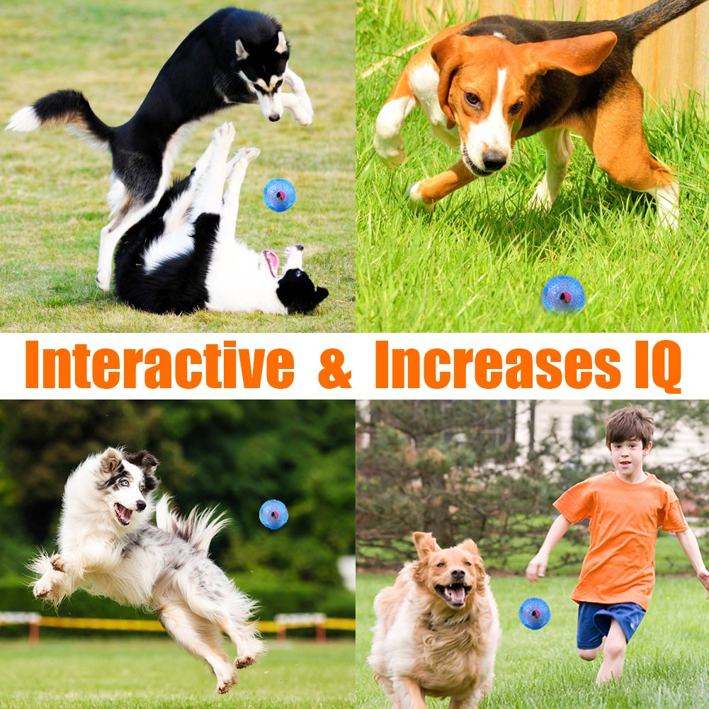 Interactive Toys Dog Chew Toy Ball IQ Treat Boredom Food Dispensing Teeth Clean Dog Balls Wolf for Small Medium Dog Toys