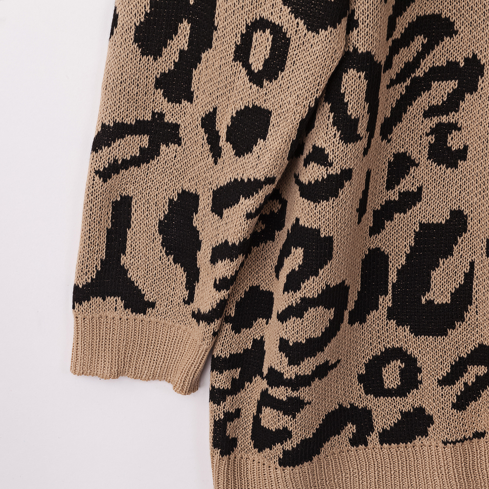 Dilusoo Leopard Print Winter Knitted Sweater Women O-neck Long Sleeve Loose Sweaters Female 19 Casual Autumn Overalls Sweaters 17