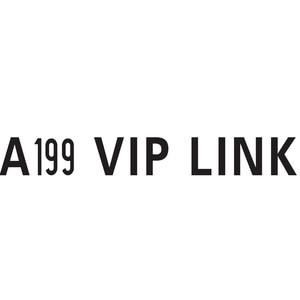 VIP Link A199 W04(China)