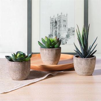 3 sztuk dekoracyjne Faux soczyste sztuczne soczyste fałszywe sztuczne rośliny z doniczkami sztuczne dekoracje sztuczne rośliny tanie i dobre opinie CN (pochodzenie) Other Pulpit Z tworzywa sztucznego Bonsai