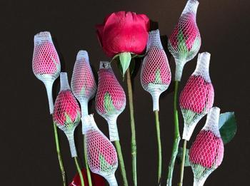 100 sztuk kwiat konserwacja pokrywa róża pokrywa z siatki Bud konserwacja pokrywa ochrona sprzedaży kwiatów tanie i dobre opinie Z tworzywa sztucznego