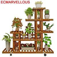 DEL #|Pflanzenregale|Möbel -