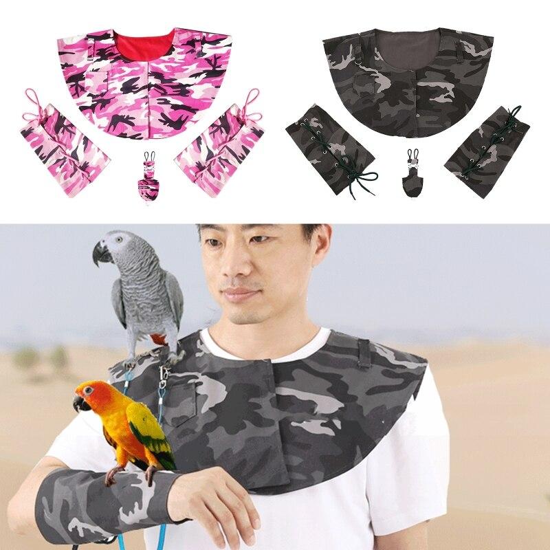 Treinamento de aves