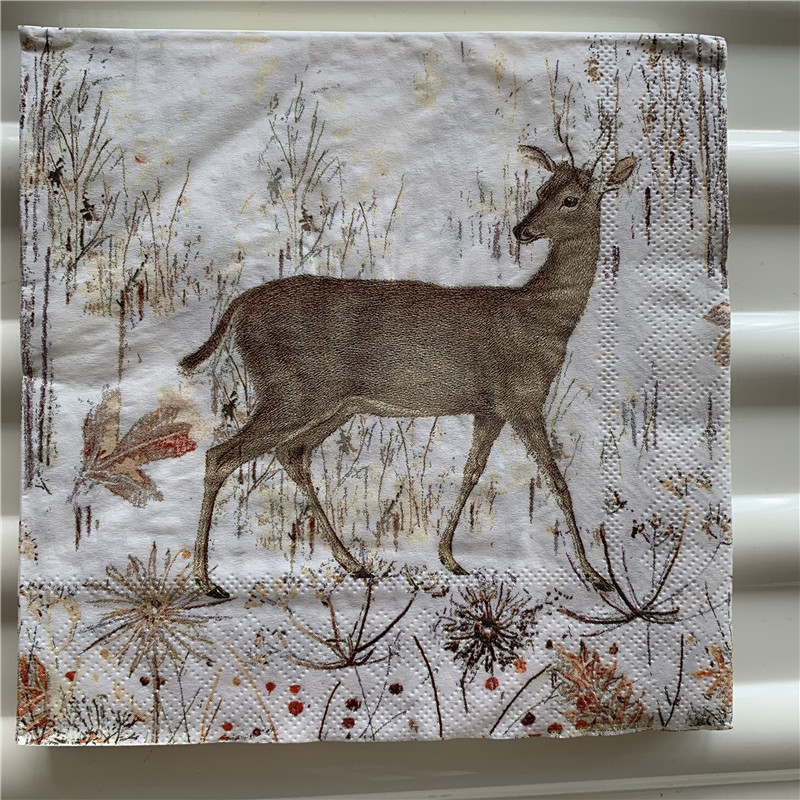 4 Paper Napkins For Decoupage Wild Forest Fruits Craft Tissue Paper Serviettes