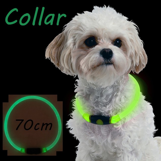 Anti-Lost LED Pet dog Collar Night Safety Flashing Glow In The Dark Dog Leash Dogs Luminous Fluorescent Collars Pet Supplies*5  My Pet World Store