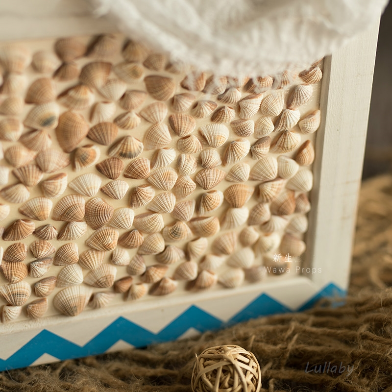 conchas exterior infantil posando recipiente acessórios do