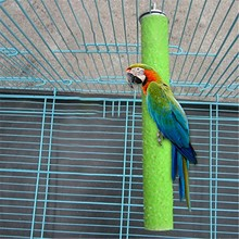 Perch-Stand Bird-Cage Parrot Beak-Feet Grinding Wooden for Nails Trimmed -Gm 1pcs Chewing-Toy