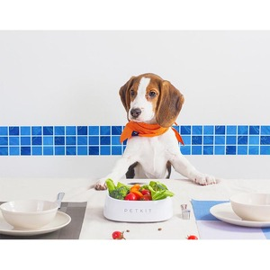 Image 5 - Youpin petkitスマートデジタルペット給餌食品抗菌ボウル防水体重計皿犬猫水食品
