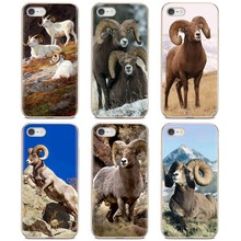 Bighorn para iPod Touch para iPhone 11 Pro 4 4S 5 5S SE 5C 6 6S 7 7 8 X XR XS Plus Max suave TPU cubre(China)