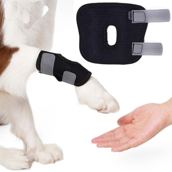 1PC Knee Pad Dog Pet Pads Recover Injury Legs Hock Brace Protector Hind Love Accessories