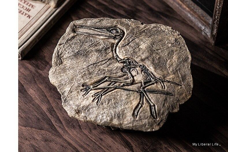 estar varanda decoração artesanato janela antigo adereços pterosaur velociraptor
