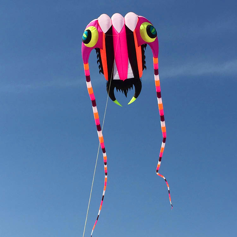 Livraison gratuite nouvelle conception 7sqm trilobites doux cerfs-volants ligne ripstop nylon tissu cerf-volant weifang cerfs-volants usine poulpe méduses - 2