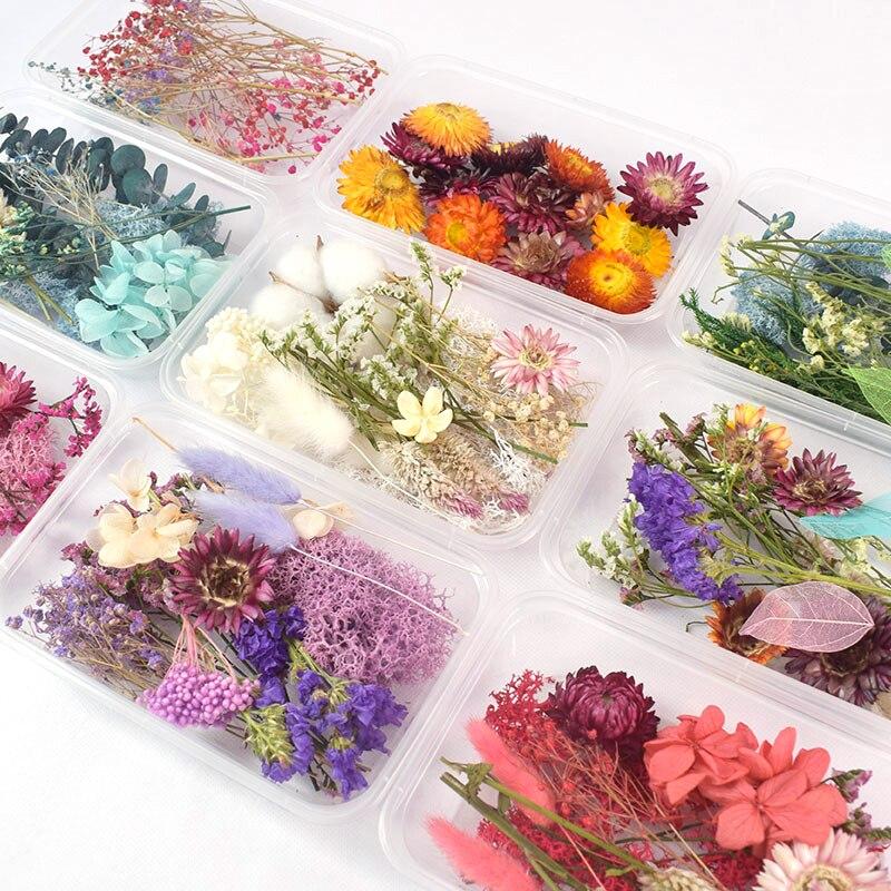 1 caixa de flores secas reais plantas secas para aromaterapia vela resina cola epoxy pingente colar jóias fazendo artesanato diy acessórios|Flores secas artificiais|   -
