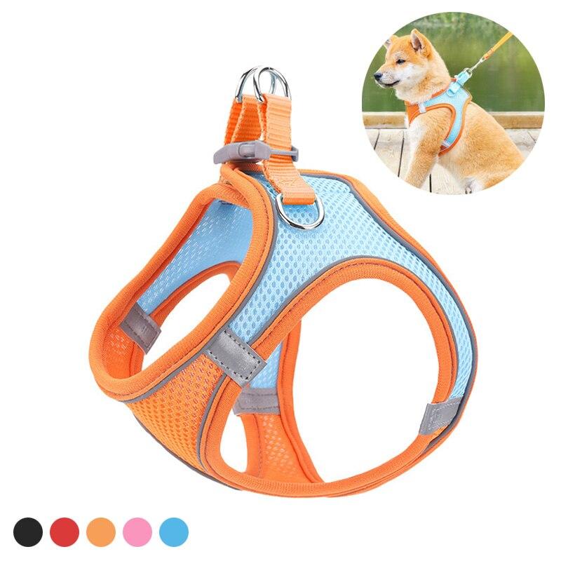 Orange Pet Leash Cat Vest Red Dog Chest Harness Adjustable Nylon Breathable Reflective Outdoor Walking Dog Chest Strap Kitten