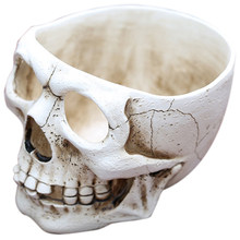Skull Flower Pots Skeleton Bone Halloween Gifts Desk Garden Flower Pot Home Decor Desk Resin Crafts(China)