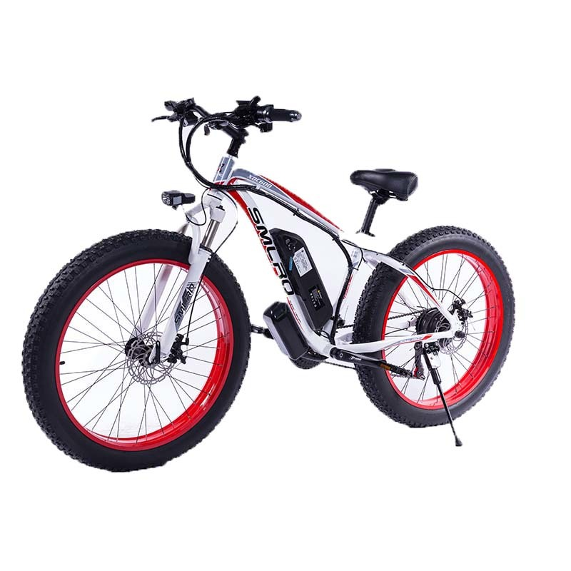 XDC600 snow bike (10)