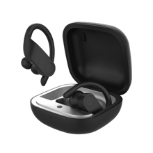 цена на Ear-Hook Sports TWS Wireless Bluetooth 5.0 Earphone for iPhone iPad Android Mobile Phone Earbuds With Microphone + Charging Case