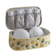 Portable Travel Bra Underwear Lingerie Case Organizer Bag Waterproof Women Cosmetic Makeup Storage bag
