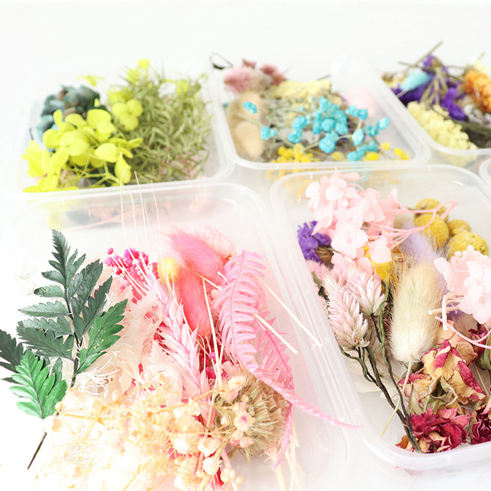 1-Box-Real-Dried-Flower-Dry-Plants-For--Candle-Epoxy-Resin-Pendant-Necklace-Making-Craft (1)