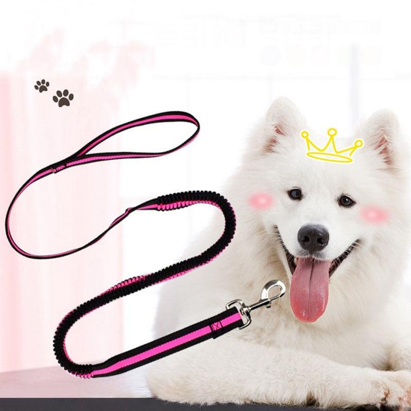190cm Elastic Dog Leash Pet Cat Puppy Anti Dash Pull Dog Lead Leash Retractable Leash For Rabbit Hamster Small Pets Dropshipping