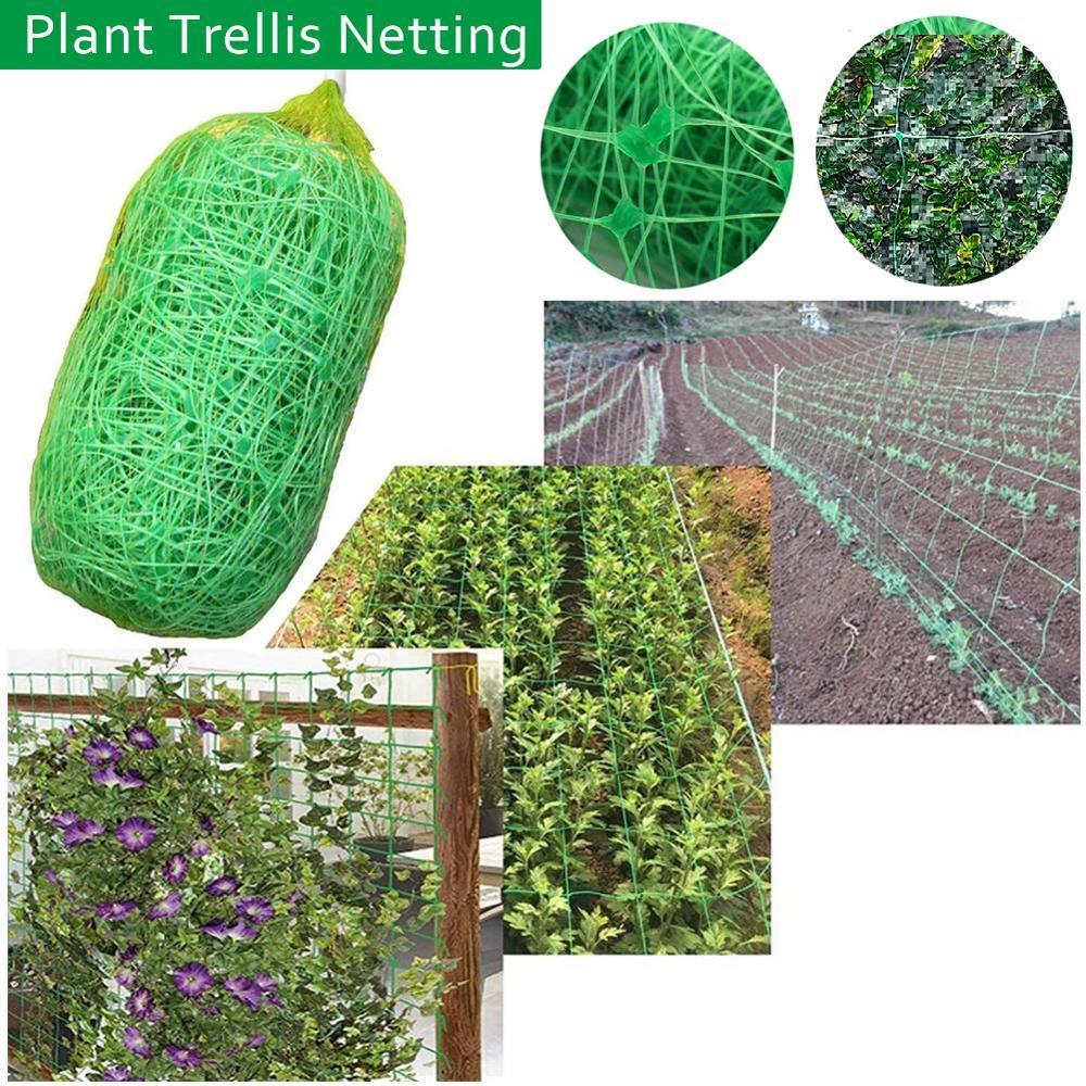 Plant Trellis Netting Pea Netting Green Garden Netting Trellis Net for Bean Fruits Vegetables Climbing Plants Garden Netting    - AliExpress