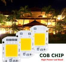 COB LED Lamp CHIP 220V 110V LED Bulb 20W 30W 50W IP65 Bombilla Smart IC DIY Flood light Bulb Spotlight Outdoor Chip Lamp Bead цена 2017