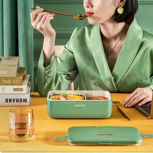 220V Electric Lunch Box Water Free Portable Lunch Heating Box Rice Cooker Constant Temperature Heating Mini Food Warmer 800ml