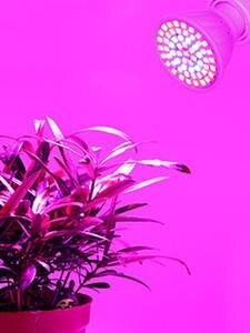 Growing-Lamp-Bulb Grow-Lights Led-Plant GU10 Garden 110V Indoor E27 for E14 MR16 Full-Spectrum