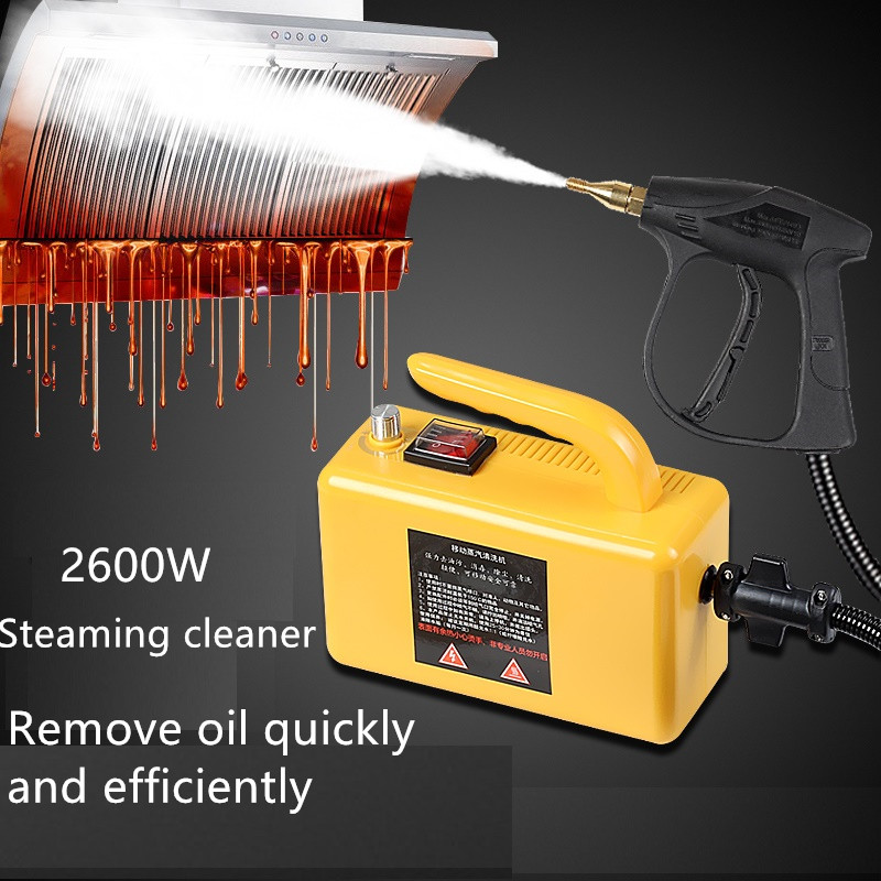 220V Electric Steaming Cleaner High Temperature And Pressure Steam Cleaner For Hood Air Conditioner Kitchen Tool Steaming Clean
