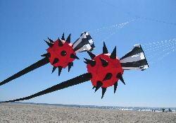 Nouvelle arrivée tout temps 3D 5.2M puissance chaussette à vent/girouette vent chaussette pour cerf-volant jouet en plein air