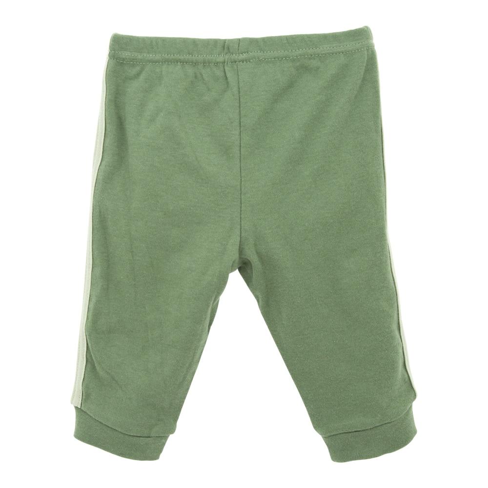 裤子背面图