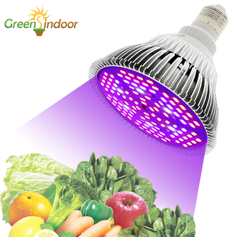 LED Grow Light E27 Bulbs Full Spectrum Phyto Lamp For Plants Lights For Flowers Succulents Plants Led Lights For Indoor Growing