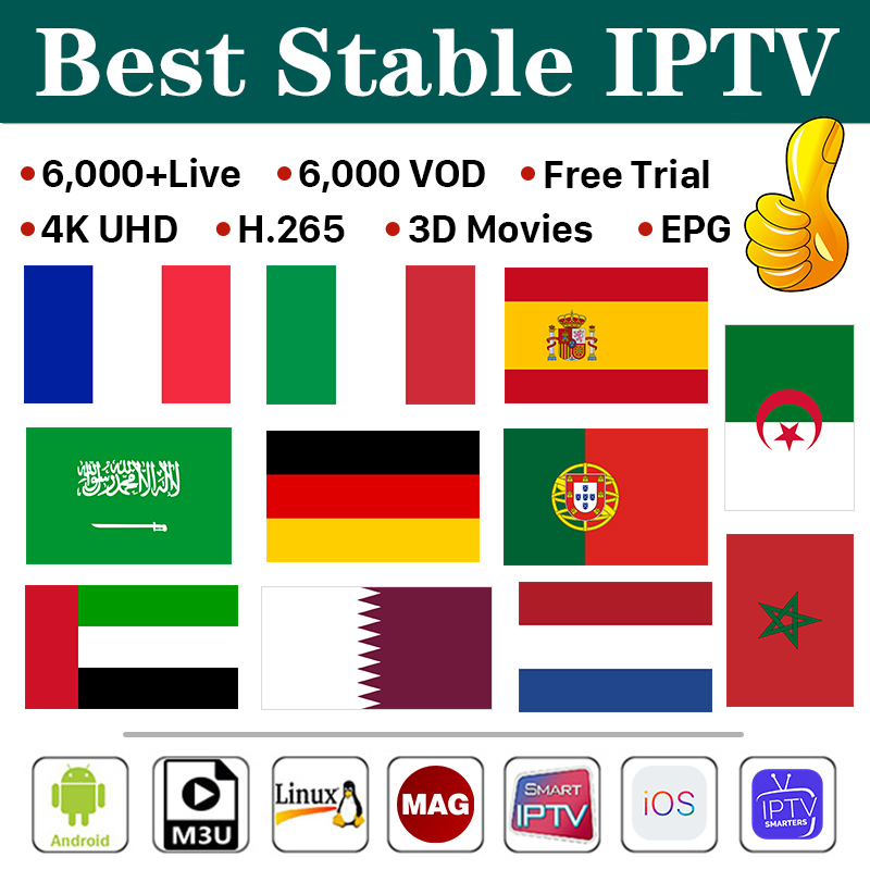 1 Year IPTV Code Spain France Full HD 4K IPTV Subscription Belgium Arabic Italy Smart IPTV Andriod Enigma2 Mag IOS M3u