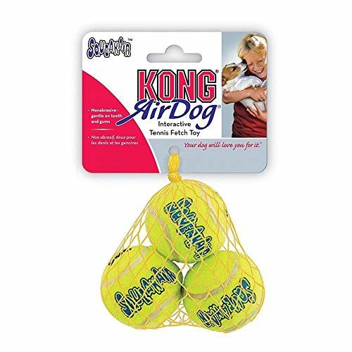KONG Air Squeaker Tennisbã Three Small Breed Of All, One Item