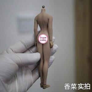 """Image 4 - Dropshipping 1/12หญิงเซ็กซี่Seamless BodyหัวSculpt SuntanผิวTBLeague PHMB2018 T01 6 """"รูปตุ๊กตาตุ๊กตา"""