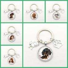 Fashion Keychain Dog Alloy Pendant Photo Glass Convex Cute Dog Paw Print Pendant Key Ring Mody Charm Gifts for Men Women Chains mit vzlom komputerov dlia maininga kriptovalut poslednii pisk mody