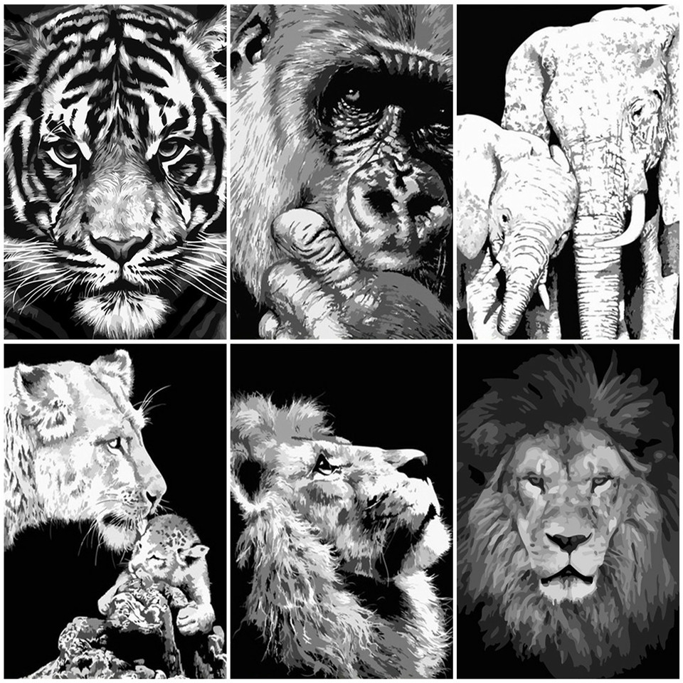 AZQSD Oil Painting By Numbers Black And White Animal DIY Handpainted Gift Acrylic Paint Coloring By Numbers Lion Wall Art
