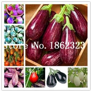 100pcs Rare eggplant bonsai, flower potted plant, garden fruit trees, southern United States, Bonsai sweet fruit Easy to Grow
